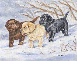 Puppy's in the Snow Note Card